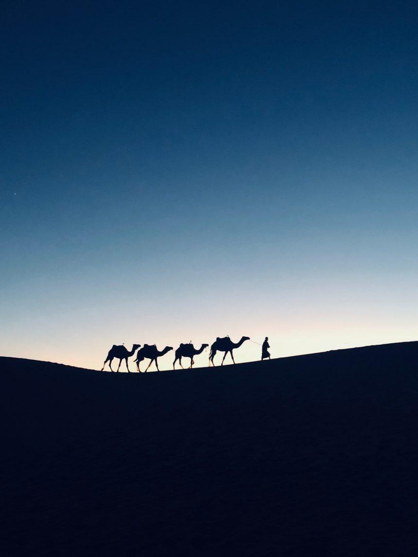 Temptations in the Desert