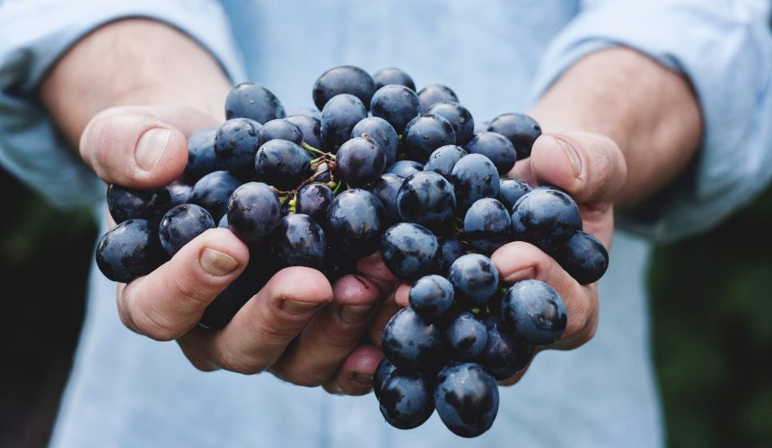 Produce Fruit in Keeping with Repentance